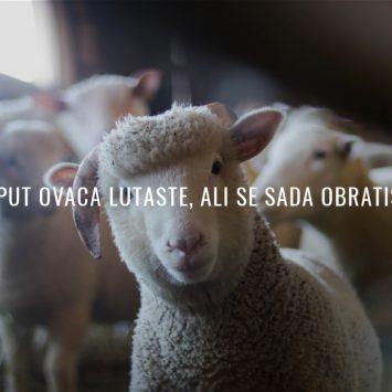 Dobri Pastir je i dalje s nama